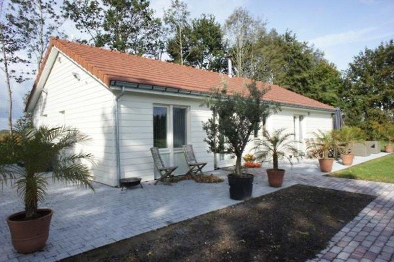 Casa vacanze in Sluis - immagine 2