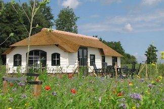 Maison de vacances à Leiden