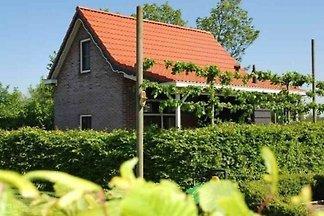 VZ081 Ferienhaus Oostkapelle