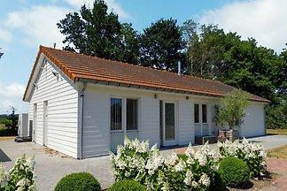 VZ205 Ferienhaus in Sluis