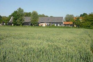 ZE196 - Ferienhaus im Oostkapelle