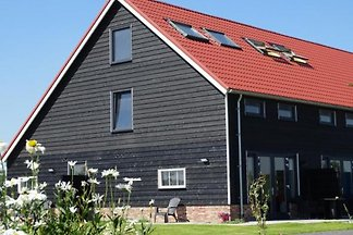 ZE581 - Ferienhaus im Vrouwenpolder