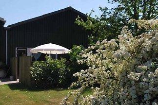 ZE176 - Ferienhaus im Vrouwenpolder