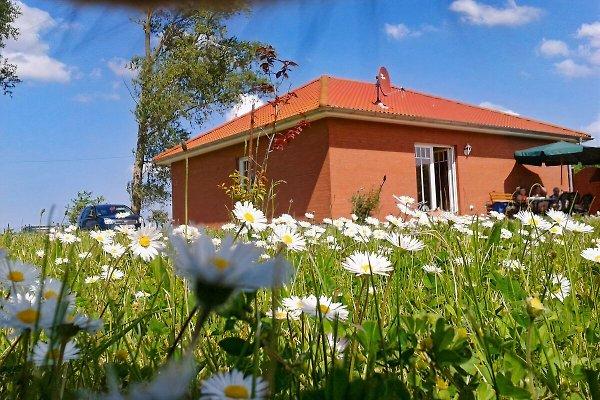 Erich la maison-cour  à Franzburg - Image 1
