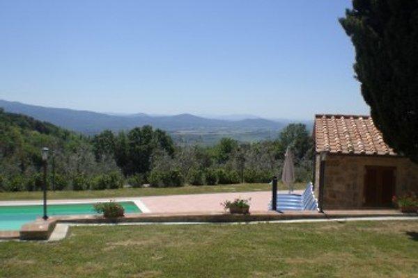 La Vigna  à Roccatederighi - Image 1