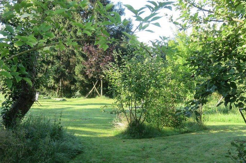 westlicher Gartenbereich