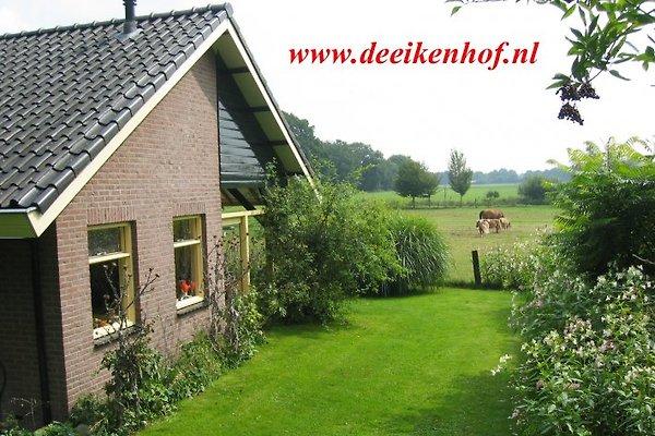 FerienWohnung Overijssel    en Hardenberg - imágen 1