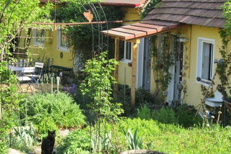 Casa Isabella - Hofansicht