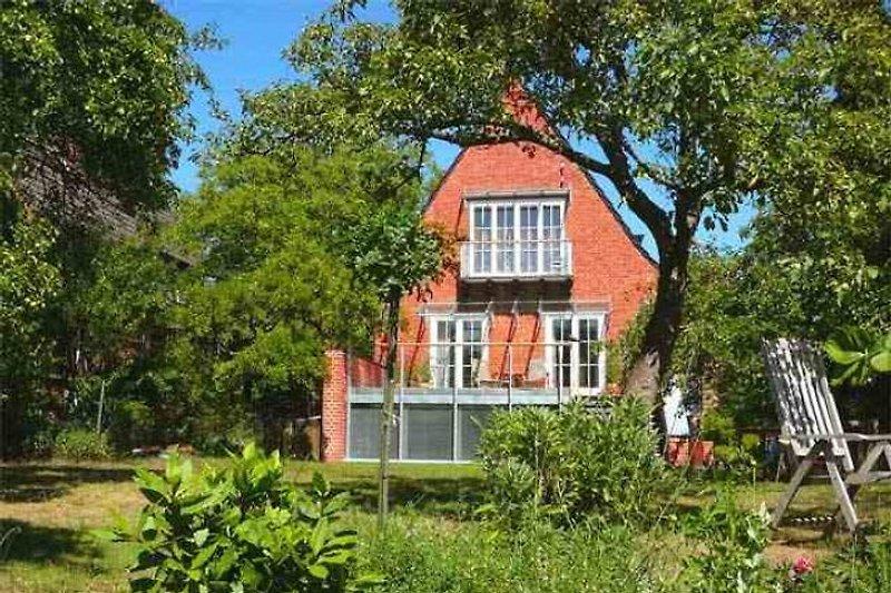 Haus Meerkultur  - apartment 2 in Warnemünde - immagine 2