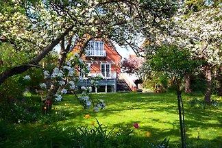 Haus Meerkultur-Gartenwohnung