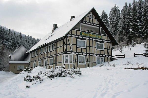 Haus Wald-Eck zw. Winterberg in Schmallenberg - immagine 1
