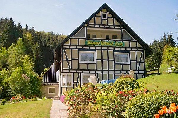 Haus Wald-Eck, zw. Winterberg en Schmallenberg - imágen 1