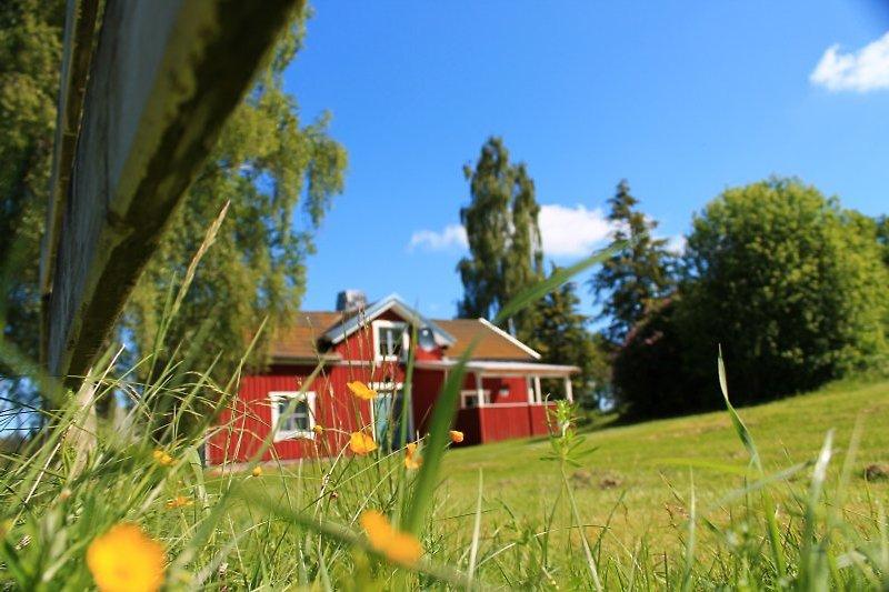 Unser Ferienhaus am Zander See Stora Nätaren.