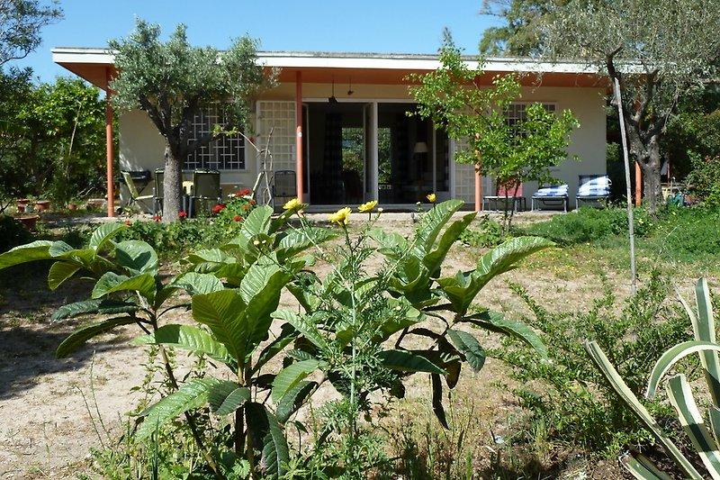Casa Robinia mit Garten