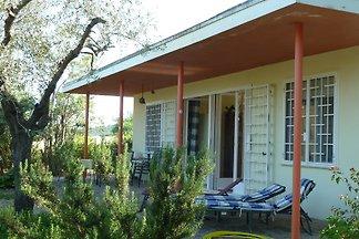 Casa Robinia