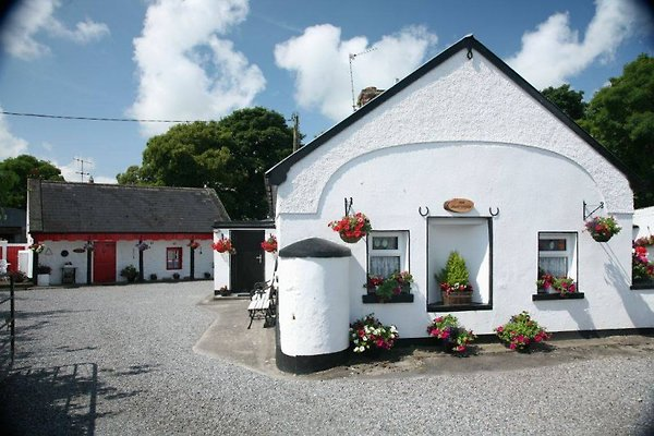 Shannon Breeze Cottage à Portumna - Image 1