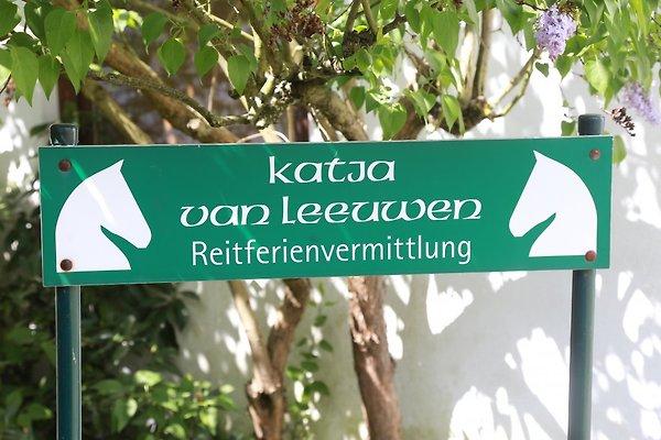Sig.ra K. Van Leeuwen