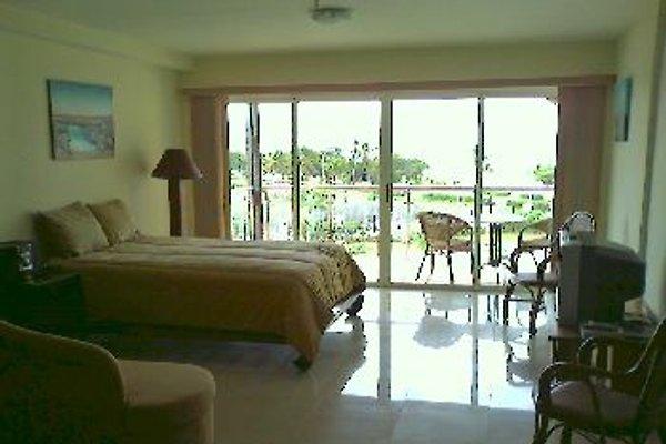 Aruba Eagle Beach Studio in Oranjestad - Bild 1