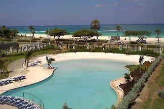 Studio Aruba Eagle Beach