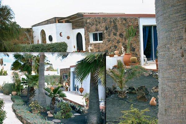VengaSurf Ferienvilla à Corralejo - Image 1