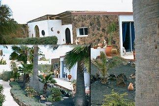 VengaSurf Villa