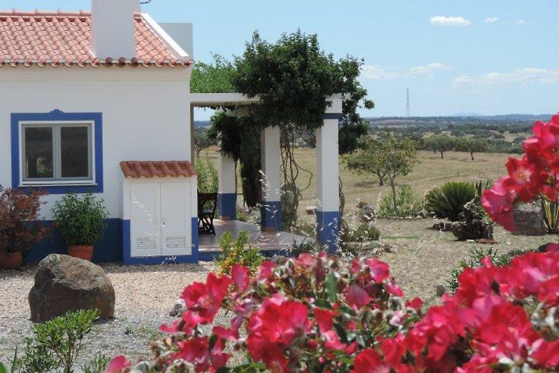 Cottage und Terrasse