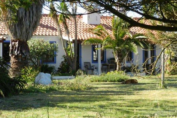 Moita Nova - Costa Vicentia en Cabo Sardão/Cavaleiro - imágen 1