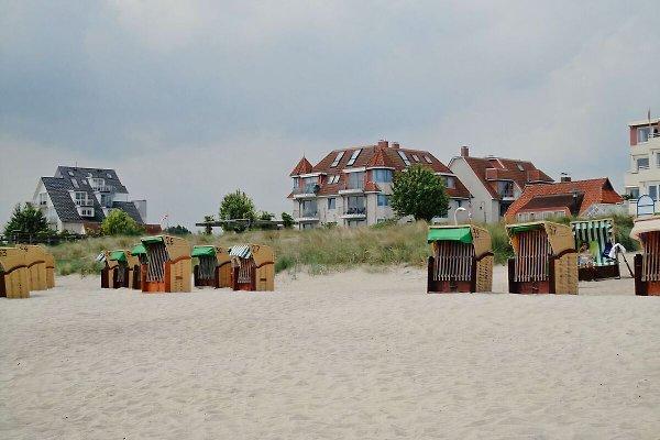 Pearl Beach maison App.  305  à Haffkrug - Image 1