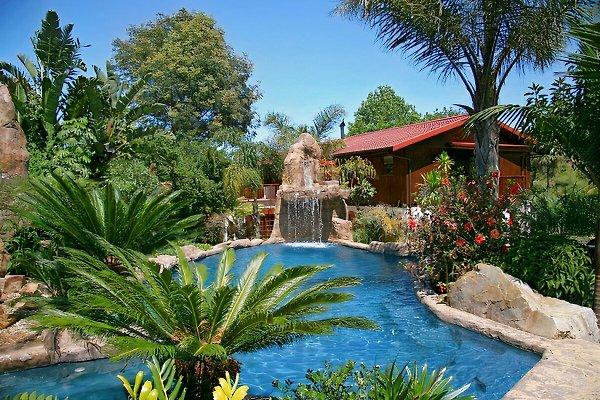 Littlewood Garden, Rockpool und Woodpecker Ferienwohnung