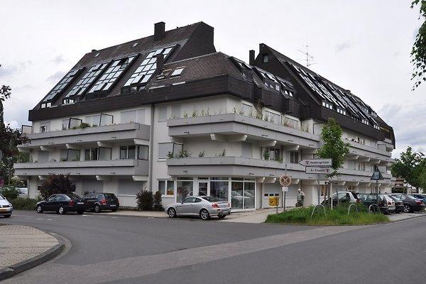 Stadtnest Trier*** in Trier - immagine 1