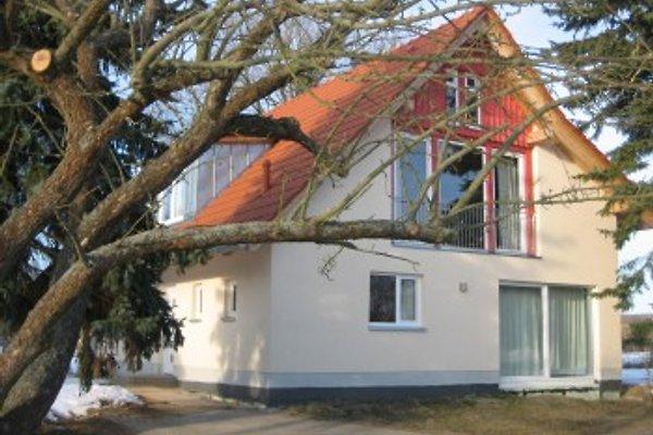 Ferienhaus Apfelblüte en Seehausen - imágen 1
