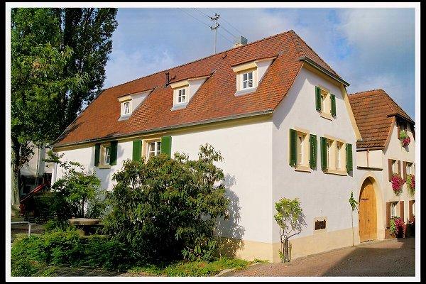 Casa Limoni à Gimmeldingen - Image 1