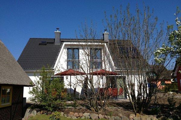 Doppelferienhaus Pögl -Seite 1 in Koserow - immagine 1