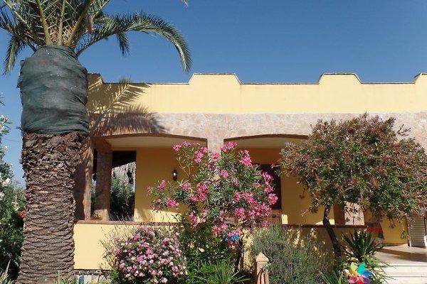 Casa Tummarello à Selinunte - Image 1
