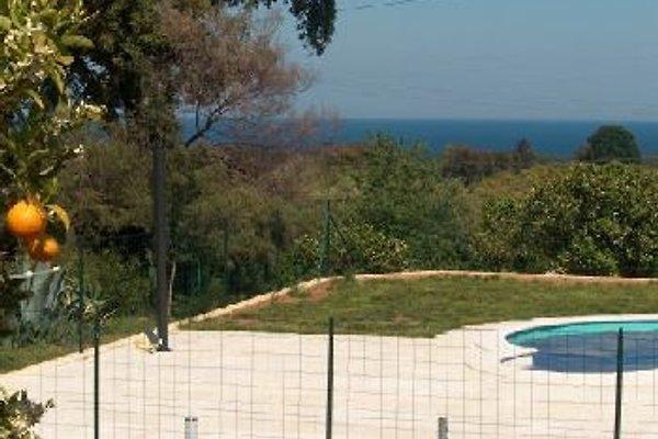 Haus Lötscher UG in Santa Maria Poggio - immagine 1