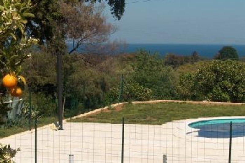Sicht aufs Meer vom Pool aus