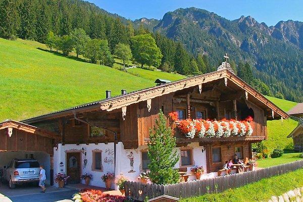 Appartement  für 2-6 Pers. à Alpbach - Image 1