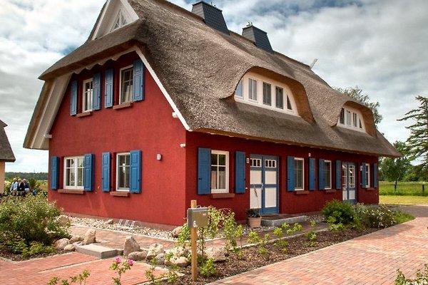 Hafenmarie in Prerow - Bild 1