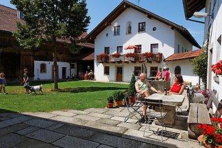 Bauernhof und Ferienhof Gründinger