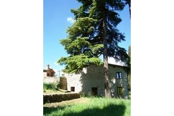 Casa i Cipressi en Sovicille  - imágen 1