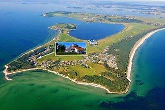 Rügen Ferienhaus am Meer