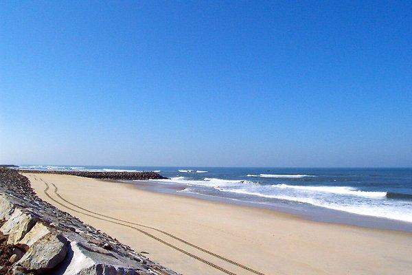 Fewo1 vacaciones en Aveiro en Praia da Vagueira - imágen 1
