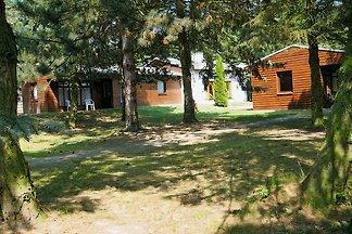 Ferienhäuser Forsthaus Langenthal