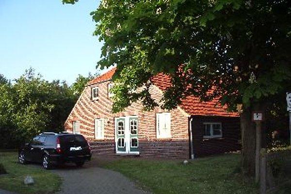 Landhaus Anni in Fulkum - Bild 1