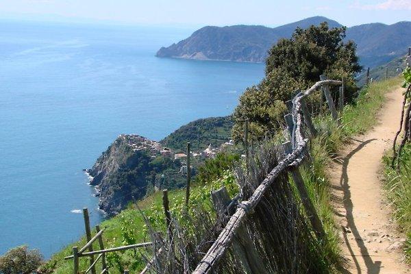 Ferienwohnung mit Garten in Cinque Terre - immagine 1