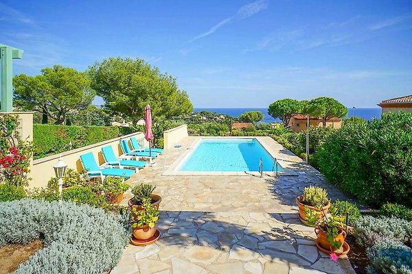 Vila s bazenom i pogledom na more - Kuća za odmor u Saint Aygulf unajmiti