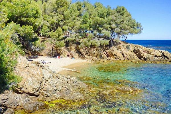 Appartement près de la plage à Les Issambres - Image 1
