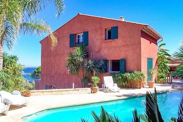 Villa mit Pool direkt am Strand in Carqueiranne - Bild 1
