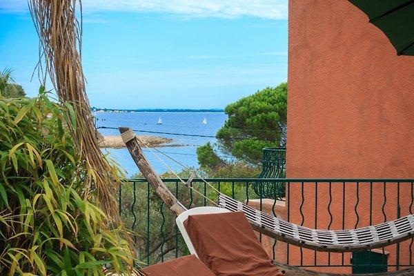 Villa met zwembad aan het strand vakantiehuis in carqueiranne huren - Zwembad met strand ...