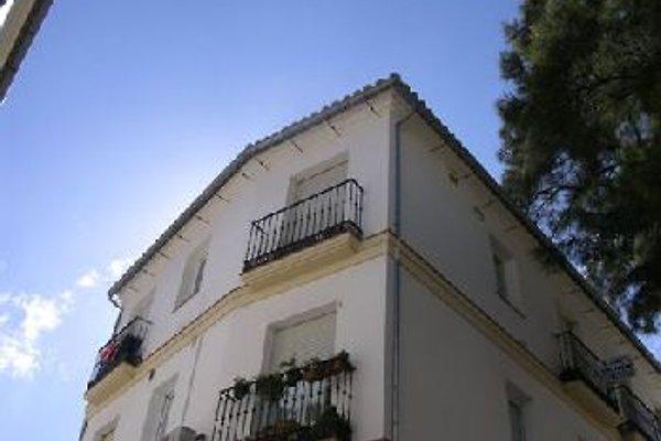 Apartment Antequera  in Antequera - Bild 1